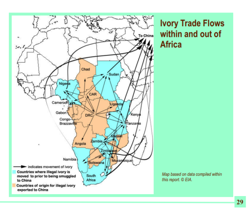 Ivoor netwerk Afrika