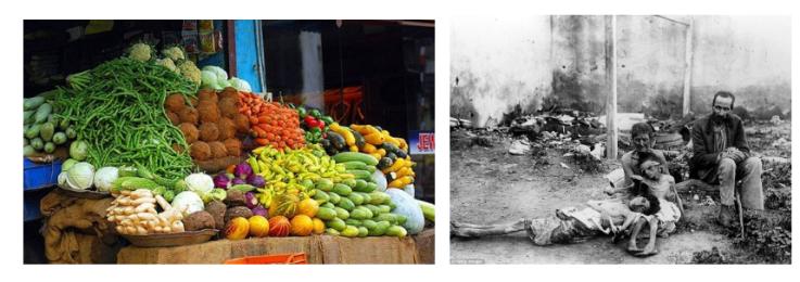 kommunisme en voedsel
