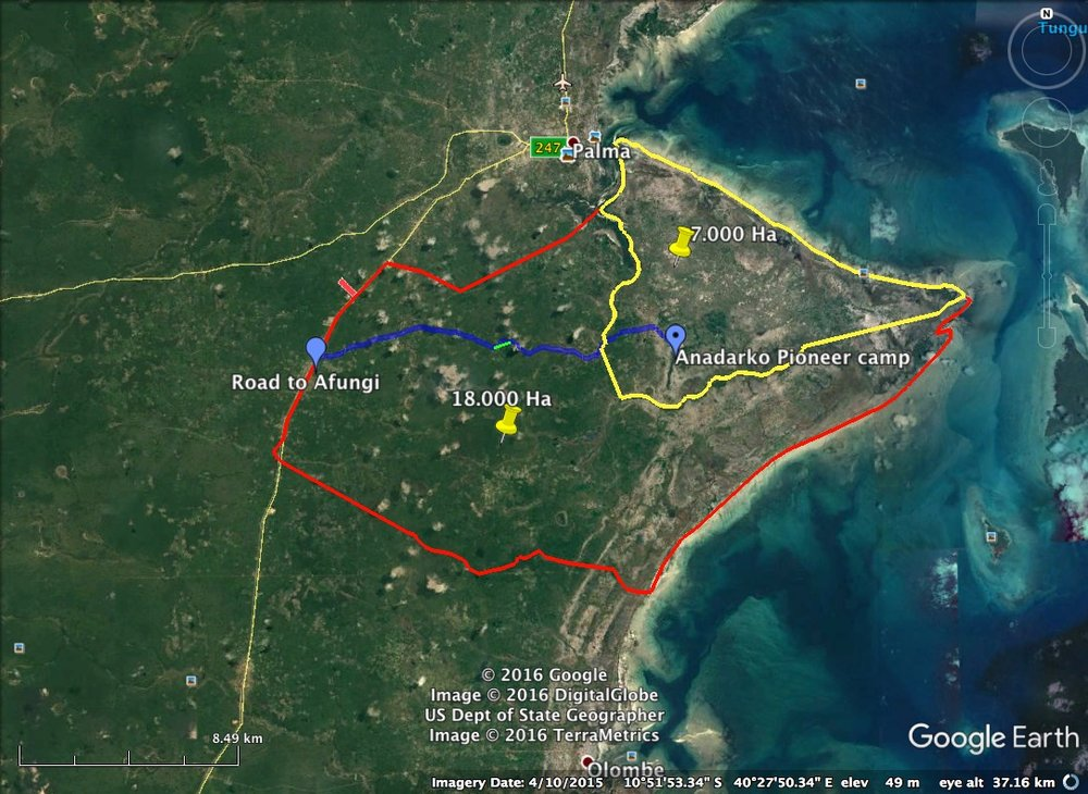 THE PLANS FOR PALMA — Palmaland